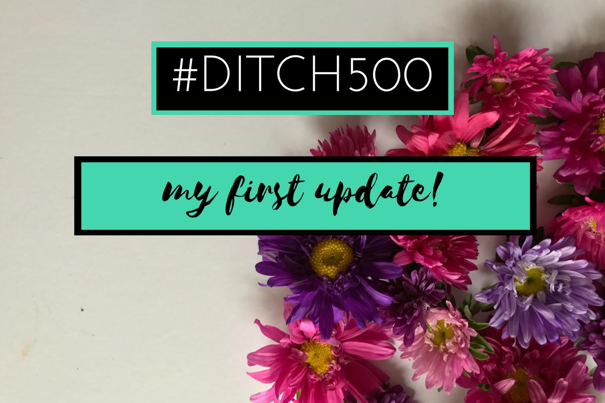 #Ditch500: My First Decluttering Update!