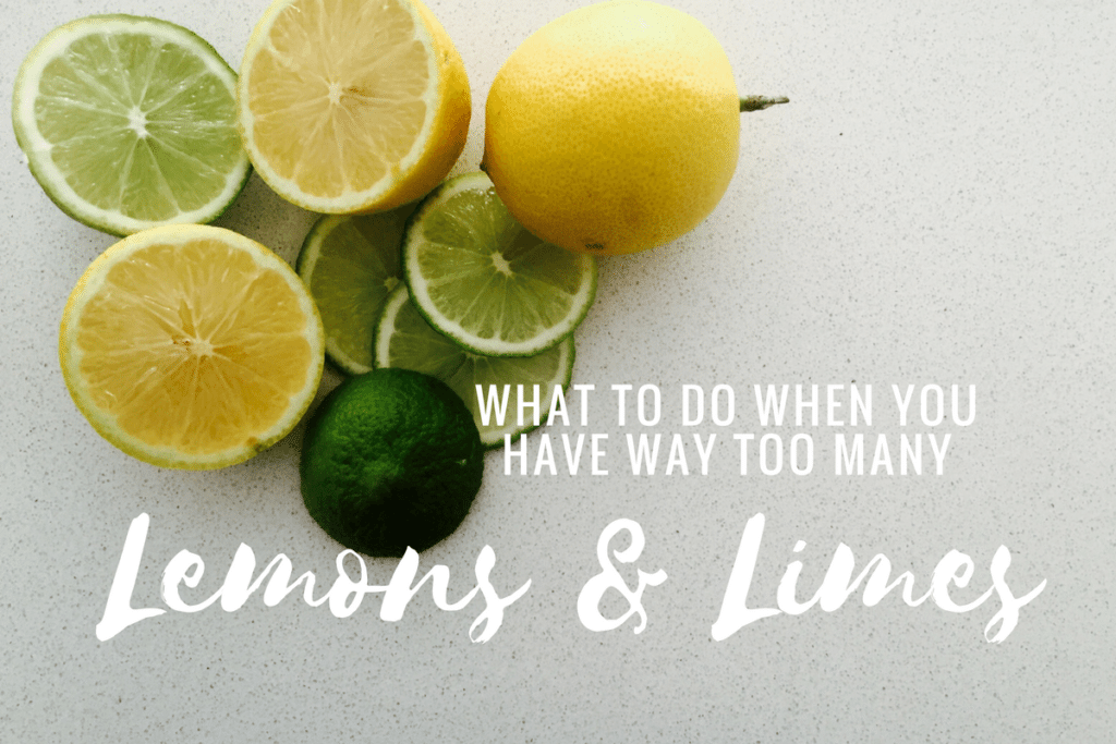 What To Do When You Have Too Many Lemons & Limes