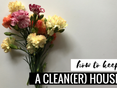 Tips for Keeping a Clean(er) House